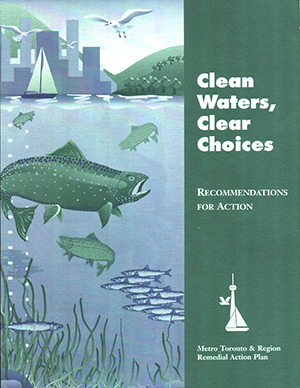 cover page of Clean Water Clear Choices report