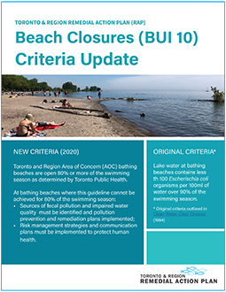 cover page of Beaches Criteria Update report