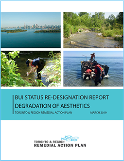 cover page of Degradation of Aesthetics BUI Re-Designation Report