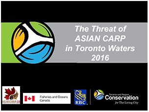 cover page of 2016 science seminar report on the threat of Asian Carp in Toronto waters