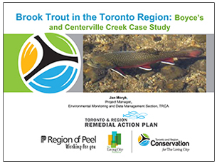 cover page of science seminar report on brook trout in the Toronto region