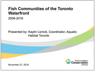 cover page of Fish Communities of the Toronto Waterfront science seminar presentation