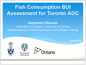 cover page of 2016 science seminar presentation on fish consumption BUI assessment