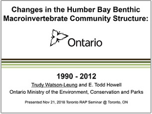cover page of science seminar report on changes in Humber Bay benthic macroinvertebrate community structure